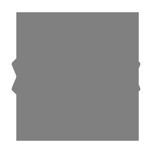 schoene kissen logo
